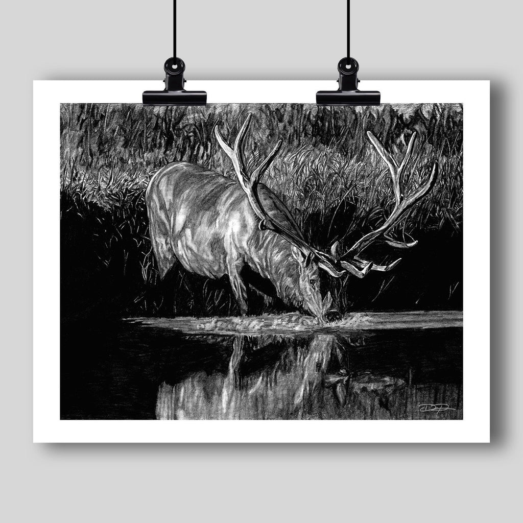 """Forest Royal"" Fine Art Elk Print - Dan Pearce Creative Shop"