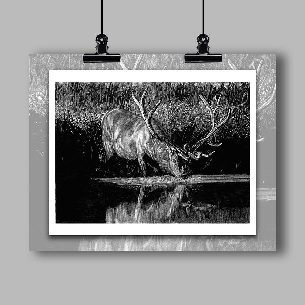 """Forest Royal"" Specialty Art Elk Print - Dan Pearce Creative Shop"