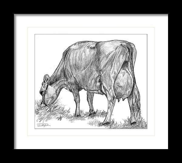 Jersey Milking Cow Fine Art Print - Dan Pearce Creative Shop