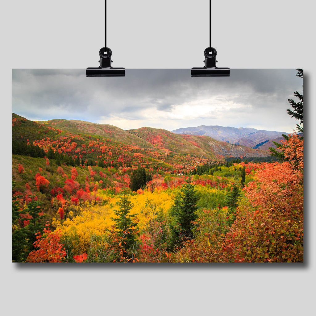 Photo Print: Autumn in the Wasatch Mountains - Dan Pearce Creative Shop