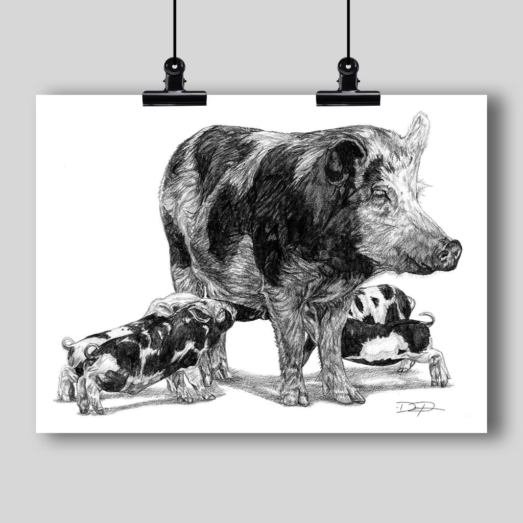 """Pigs"" Fine Art Print - Dan Pearce Creative Shop"