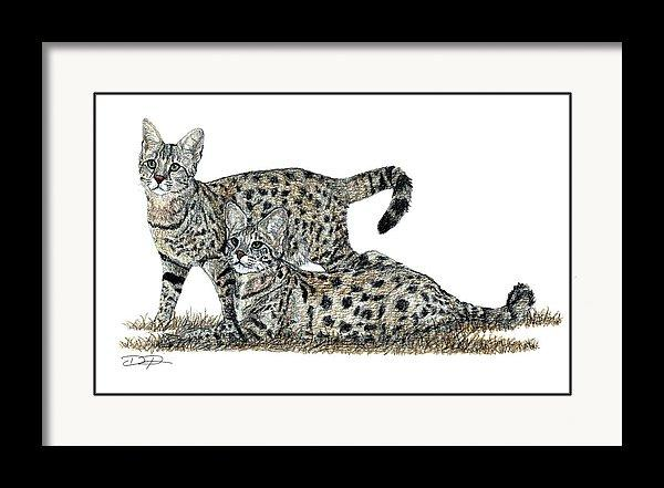 Savannah Cats Fine Art Print - Dan Pearce Creative Shop