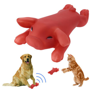 Pet Dog Toy Rubber Roasted Pig Squeak Squeaker Chew Toy   (AE)