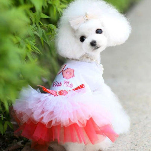 Dress Spring Summer Puppy Small Dog Lace Princess   (AE)
