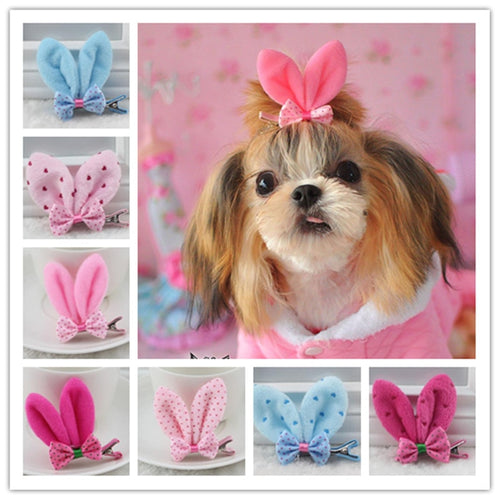 Pet Grooming Accessories  Bunny style dogs / Headwear hairpin Yorkshire flower hair clip  (AE)