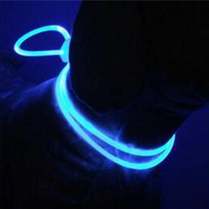 Night Safety Pet Collar Luminous Light Up Pet Dog Bright Collar Leash   (AE)
