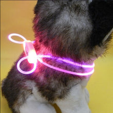 Load image into Gallery viewer, Night Safety Pet Collar Luminous Light Up Pet Dog Bright Collar Leash   (AE)