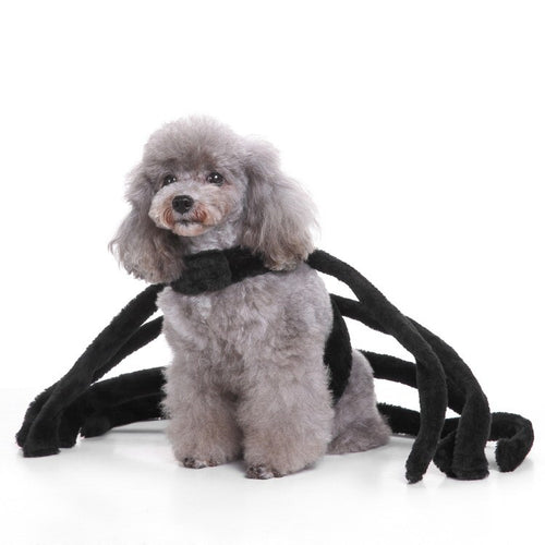 Dog clothes for Halloween Christmas pet clothes  (AE)