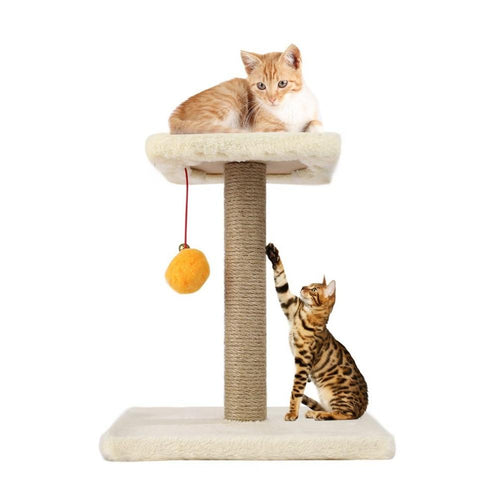 Pet Cat Tree Climbing Frame Toy with Ball Shape Bell Toy Cat Scratching Posts