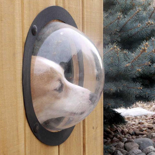 Pet Peek Fence Bubble Window For Dogs Durable Acrylic Dome Fence Window (AE)