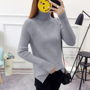 2018 Spring Autumn Winter Fashion Women sweater high elastic Solid Turtleneck sweater slim tight Bottoming Knitted Pullovers-rodewe