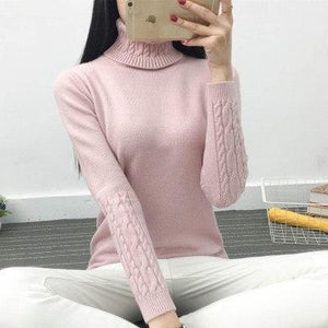 Hot Sale Winter Turtleneck Sweater Women 2018 Knitted Long Sleeve Jumper Women Sweater And Pullover Female tricot pull femme Top-rodewe