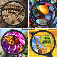 Load image into Gallery viewer, 5.5 Inch Premium Extra Large and Lightweight Shatterproof 2X Lighted Magnifying glass with 5X Zoom