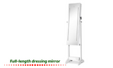 2-in-1 Lockable Mirror and Cabinet