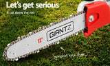 62CC 2-in-1 Petrol Pole Chainsaw Hedge Trimmer