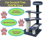 Cat Scratch Tree