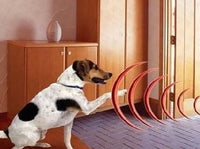 Electronic Pet Fencing System