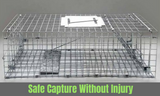 Large Humane Animal Trap Cage Possum Rabbit Fox