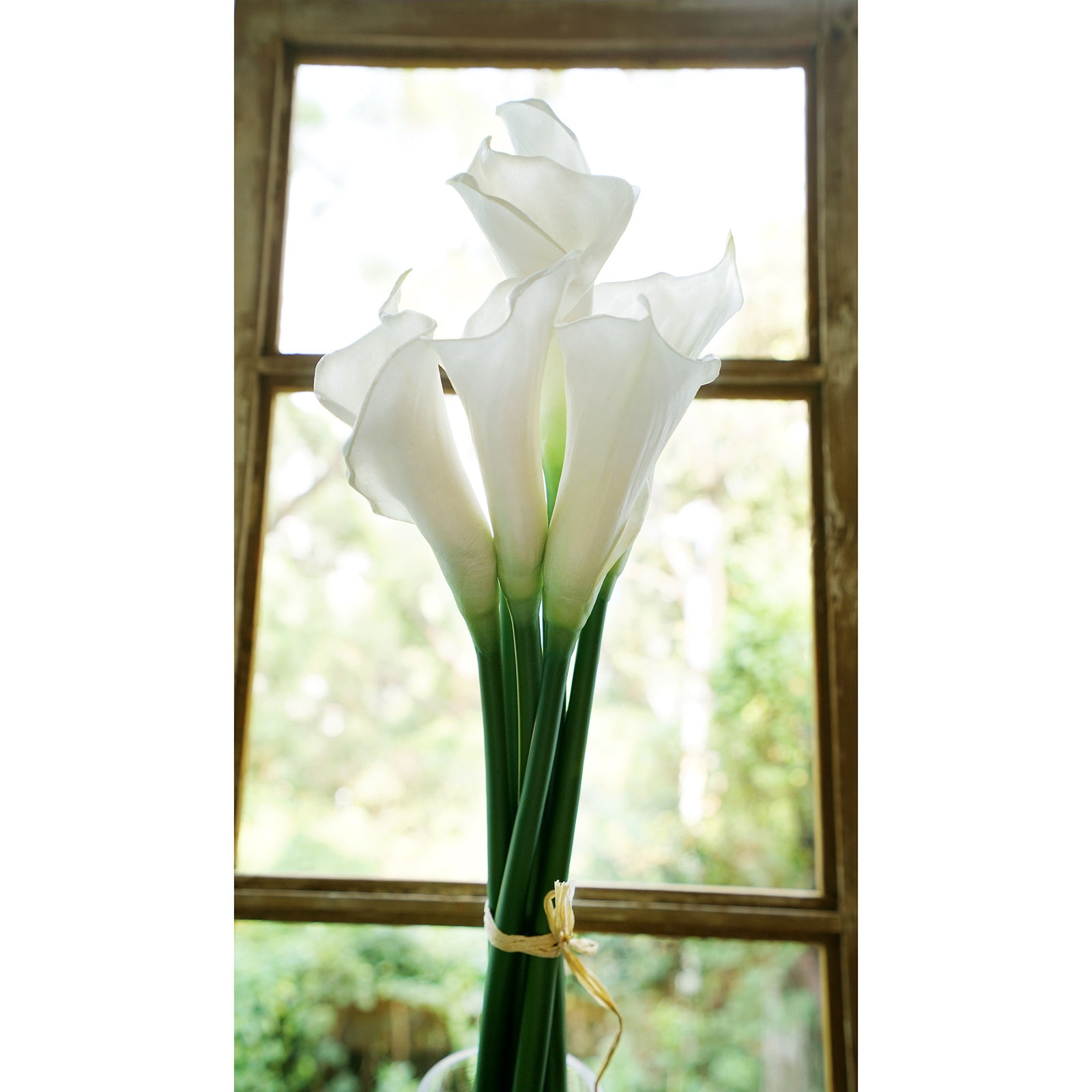 White Real Touch Large Size Calla Lilies Artificial Flower Bouquet 6 Stems