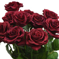 Dark Scarlet Real Touch Silk Artificial Flowers 'Petals Feel and Look like Fresh Roses 10 Stems