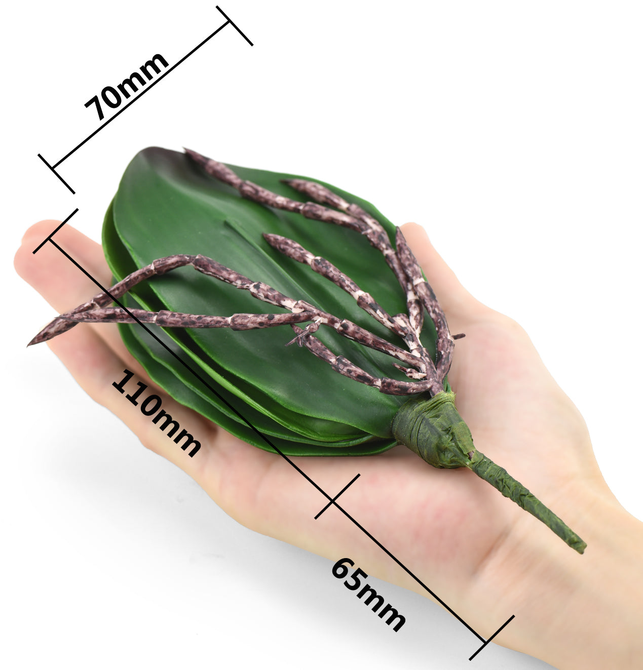 Small Artificial Real Touch Orchid Leaf& Root Bundles,Simulation Green Plants