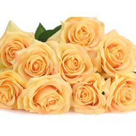 Sun Yellow Real Touch Silk Artificial Flowers 'Petals Feel and Look like Fresh Roses 10 Stems
