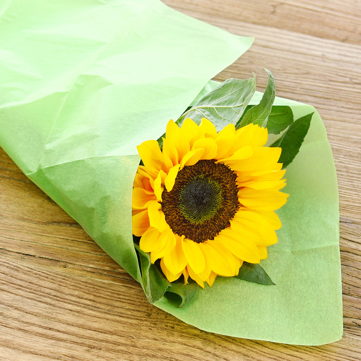 50 Sheets Green Yellow Wrapping Tissue Paper