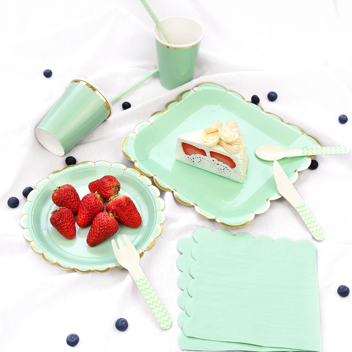Mint Green Round Party Paper Plates 24 Pieces