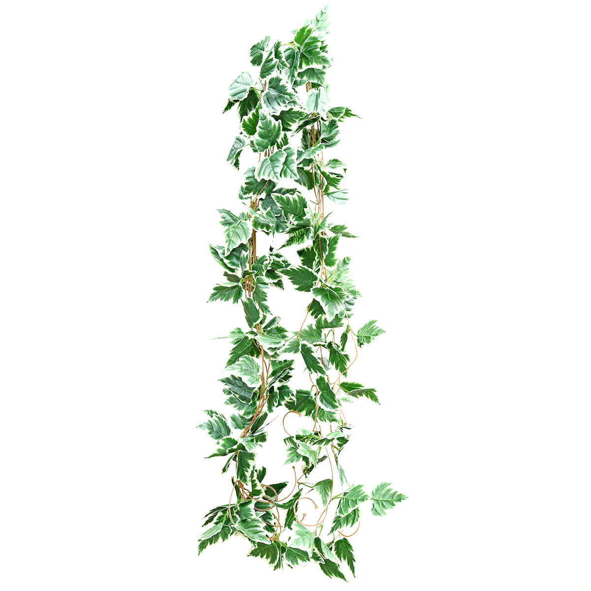 Artificial Hanging Plant White Edge Ivy Leaves Vine Silk Greenery Leaves (12.5m / 41 feet)