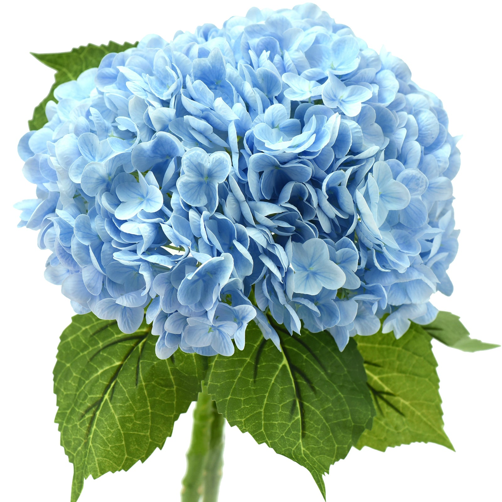 FiveSeasonStuff 2 Stems Real Touch Petals and Leaves Artificial Hydrangea Flowers Long Stem Floral Arrangement | for Wedding Bridal Party Home Décor DIY Floral Decoration (FiveSeasonStuff 2 Stems Real Touch Petals and Leaves Artificial Hydrangea Flowers Long Stem Floral Arrangement | for Wedding Bridal Party Home Décor DIY Floral Decoration (blue)