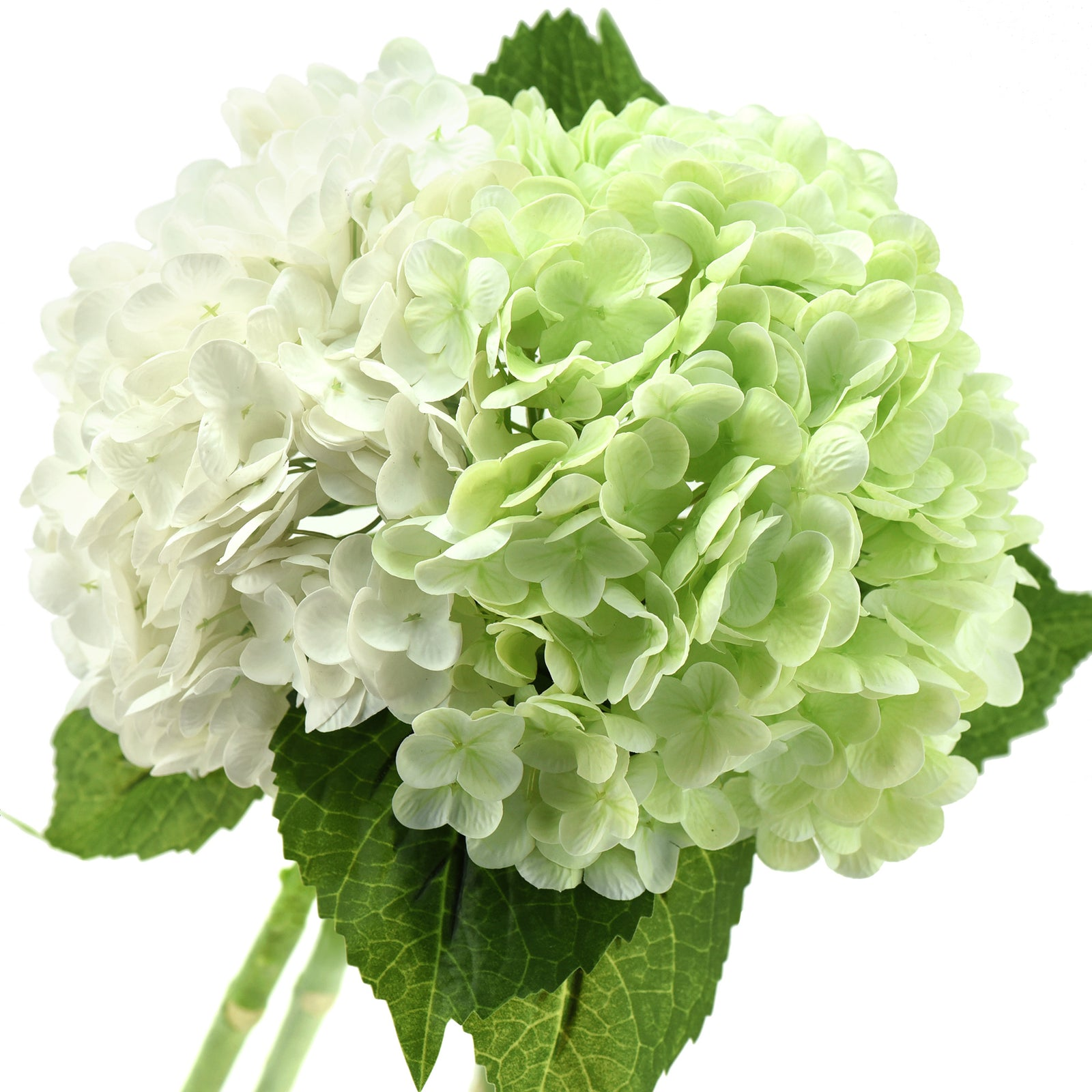 FiveSeasonStuff 2 Stems Real Touch Petals and Leaves Artificial Hydrangea Flowers Long Stem Floral Arrangement | for Wedding Bridal Party Home Décor DIY Floral Decoration (White | Pale Green)