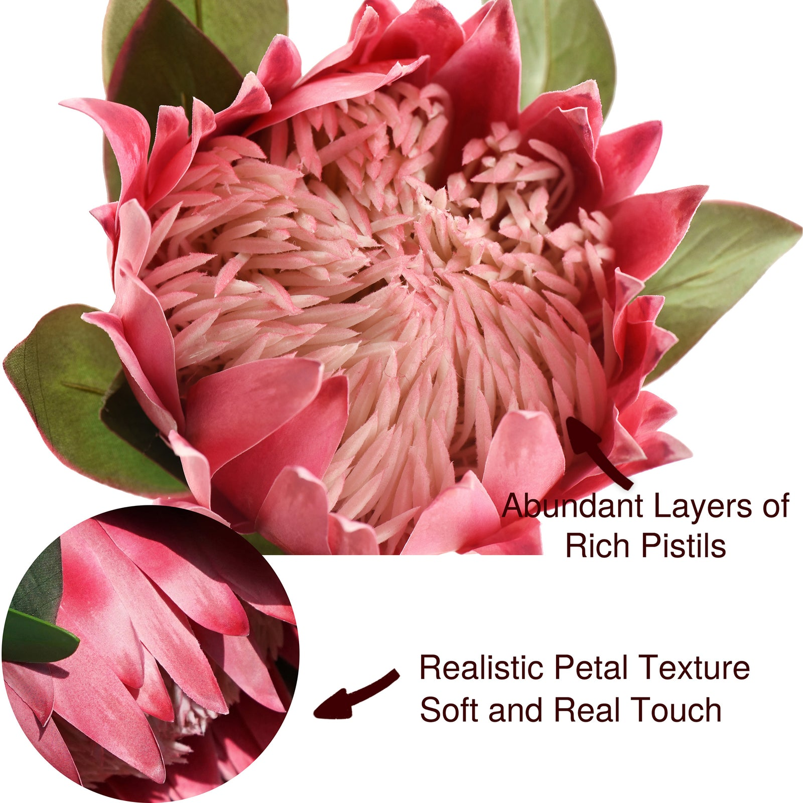 FiveSeasonStuff King Protea Real Touch Silk Artificial Flowers for Wedding Bouquet Home Kitchen 30 Inches Tall Tropical Flower Arrangements Decor 1 Stem (Light Burgundy)