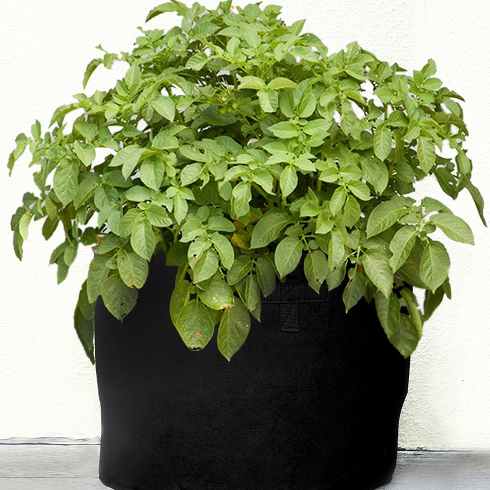 5 Pack Grow Bags Garden Heavy Duty Non-Woven Aeration Plant Fabric Pot Container