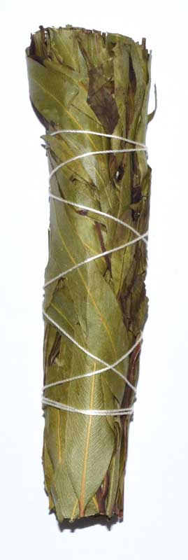 "4"" Eucalyptus Citridora Smudge Stick"