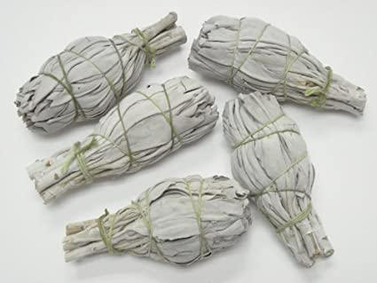 12 Pack of Mini White Sage