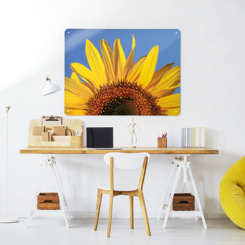 Sunflower - Large Magnetic Notice Board