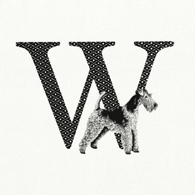 W for Wire-Haired Fox Terrier