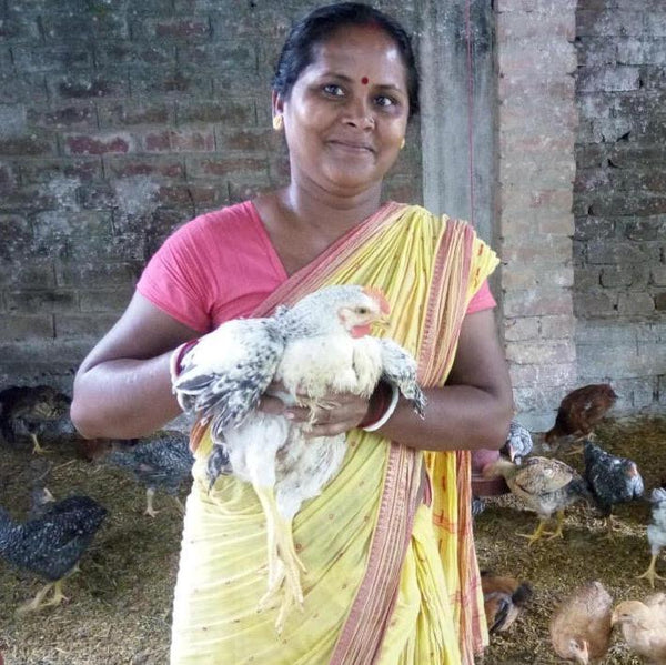 Shivia: Empowering People Through Poultry