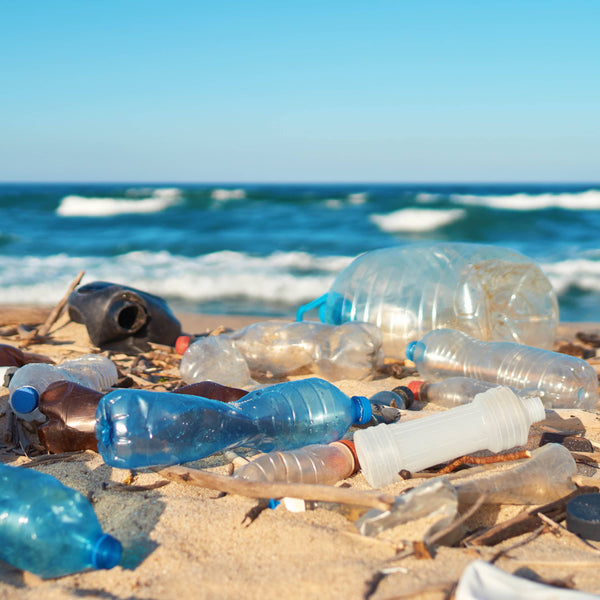 OCEAN PLASTIC: THE FACTS