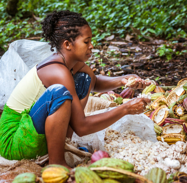 Why Eating Fairtrade Chocolate Today Will Save Lives