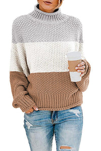 Multicolor Oversized Chunky Batwing Long Sleeve Turtleneck Sweater