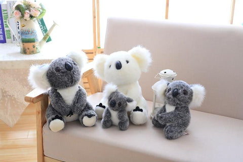 Image of Henry Plush Koala Plush Toys in all sizes from Almas Collections