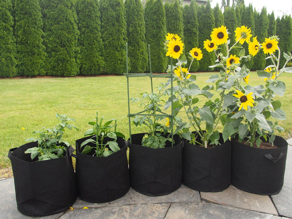 What are the Advantages of Nonwoven Grow Bags for gardening?