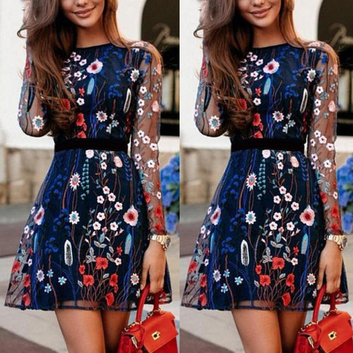 Embroidered Floral Sheer  Dress