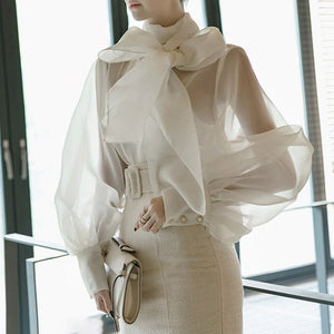 Summer Long Lantern Sleeve Bow  Sheer Blouse