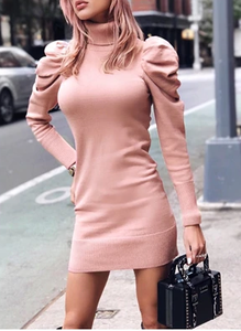 Turtle Neck Bodycon Knitted Dress