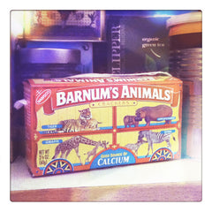 Curio & Co. looks at the power of packaging with classic childhood treat Animal Crackers in a Barnum's Animals Circus Wagon Box. Kitchen Cabinet, animal crackers, packaging as toy, vintage circus. Curio and Co. www.curioandco.com