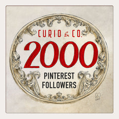 Curio & Co. celebrates 2000 followers on Pinterest. Image from www.curioandco.com