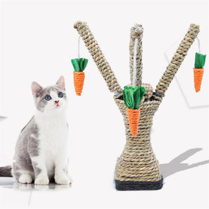 Pet Cat Hamster Climbing Carrot Tree