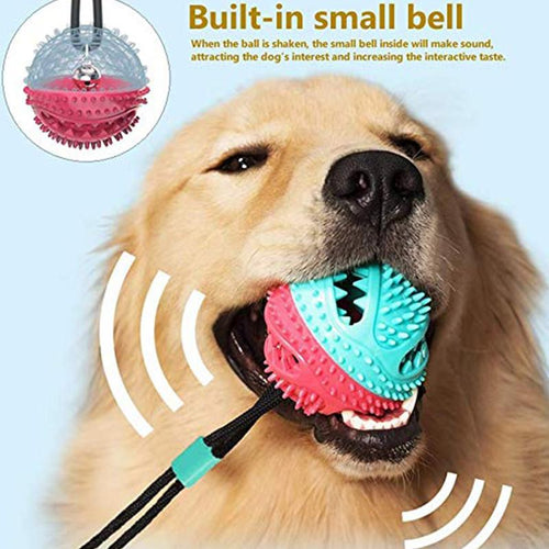 Molar Training Rope Self-Playing Rubber Toy With Suction Cup Chew Toy Cleaning Teeth For Pet